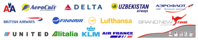how to become an airline consolidator